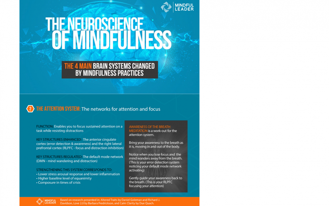 The Neuroscience of Mindfulness 2 of 4