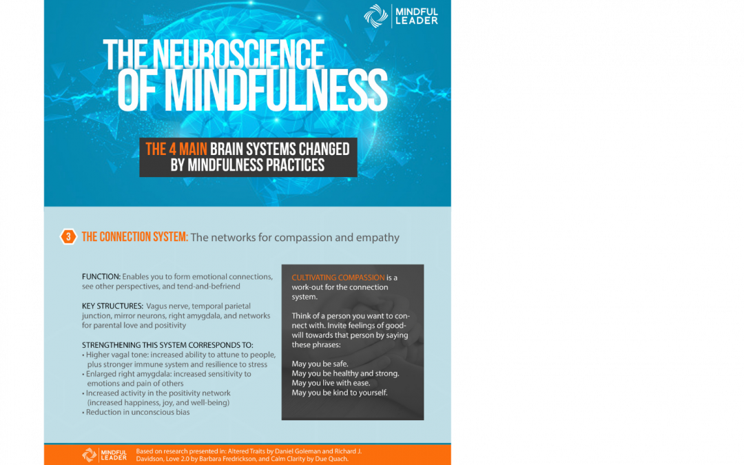 The Neuroscience of Mindfulness 3 of 4