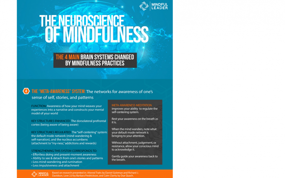 The Neuroscience of Mindfulness 4 of 4