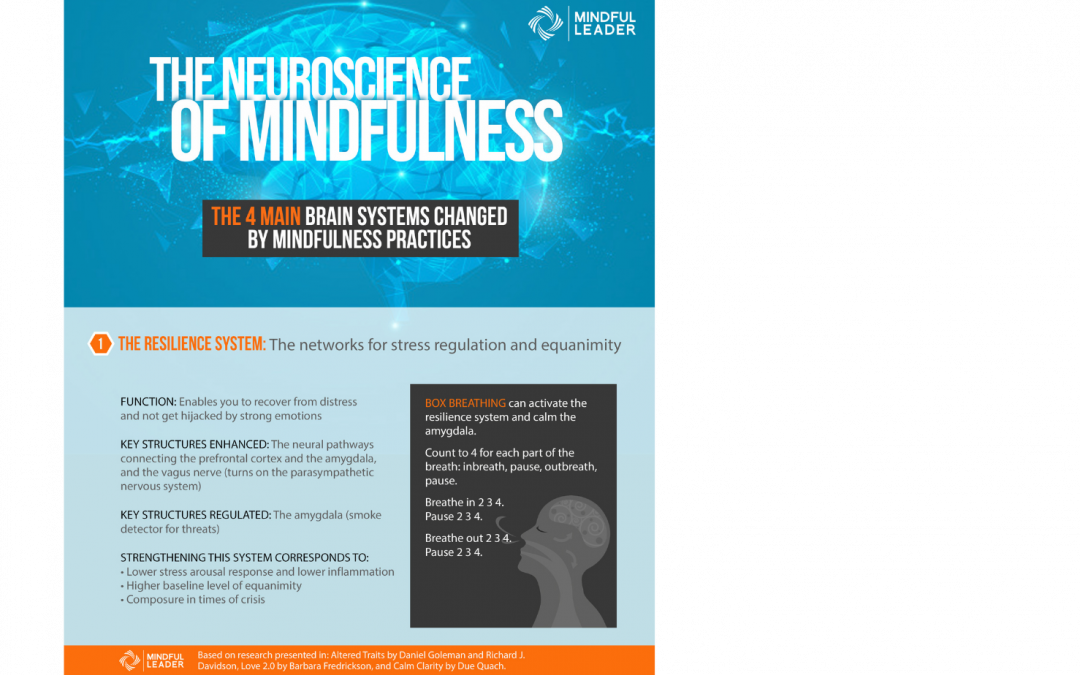 The Neuroscience of Mindfulness 1 of 4